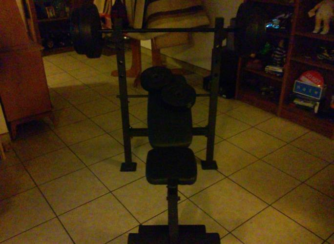 golds gym weight bench(weights)