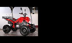 Specification Engine: Single cylinder,125cc,Four-stroke, Air-cooled Drive System: Automatic with reverse Transmission: Chain Battery:12V,5AH Start Method: Electric Start Fuel Capacity:2.0 L Front suspension: Double spring suspensions Suspension: Single