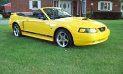 2004 FORD MUSTANG GT 40TH ANNIVERSARY CONVERTIBLE VERY CLEAN INSIDE AND OUTSIDE LEATHER LOADED POWER TOP 6 DISC CD PLAYER KEYLESS ENTRY AUTOMATIC TRANSMISSION RUNS AN DRIVES GREAT 4.6L V8 133000 MILES HAS 17INCH WHEELS FOG LIGHTS ALOT MORE TO MUCH TO LIST