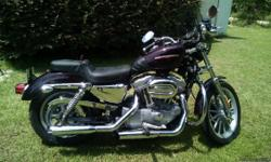 BLACK CHERRY PEARL, 2006 HARLEY DAVIDSON XL883L SPORTSTER MOTORCYCLE FOR SALE. ODOMETER READING 14,000 ORIGINAL MILES. SMOKED HD WINDSHIELD AND MUSTANG SADDLE LESS THAN 1 YEAR OLD, SADDLEMAN WINDTUNNEL LUGGAGE INCLUDED AND IRONMAN TANK BAG. FRONT FORK