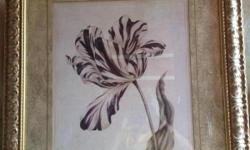 """This is an elegant picture with a large plum flowerand a white background. Wide golden frame. 31 x 36"""" Please call if you have any questions. Thanks!"""