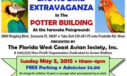 EXOTIC BIRD EXTRAVAGANZA presented by the Florida West Coast Avian Society to support local parrot rescue and sanctuary.  Sunday, May 3rd 2015. Parrots, finches, canaries, cages, toys, perches and food for sale. 3 Raffles (11:30am, 1:30pm & 3pm;