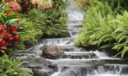 Green Beauty Creation 3005 Silver Creek rd. # 118 San Jose, CA 95121 (561) 688-3530 www.greenbeautycreation.com