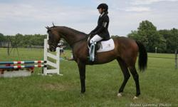 Tucker is a 16.3h 12yr OTTB gelding who has competed successfully numerous times at the BN level and is ready to move up. Was registered to go novice but event was cancelled. He has never had a cross country penalty, and has had only one jumping penalty