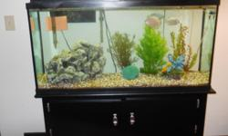 55 Gallon fresh water aquarium and cabinet stand. Complete with decorations, filter, lights, heater, misc. Now set up. If interested come see and then I will dismantle it.