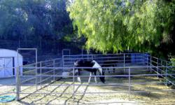 """Horse Boarding 36 ft x 36 ft Corrals $100 Without Hay or $180 With Hay (95l)-878-5392 YOU JUST RIDE ALL DAY ON MILES OF FREE HORSE TRAILS LOCATED ACROSS FROM """"THE RIVER BOTTOM"""" AT THE HIDDEN VALLEY WILDLIFE REFUGE. JUST ON THE BORDER OF RIVERSIDE AND"""