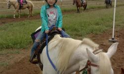 North Star Stable?s Kid?s Summer Horse Clinic! Taking Registrations for July Session Now! Schools Out! Give that horse crazy kid a summer to remember! This week long clinic is tailored for children ages 6-17. No experience is