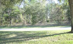 This .33 acre lot is located in the desirable Sugarmill Woods Golf Community. Separate membership to the community facilities- Sugarmill Woods Country Club, Southern Woods Golf Club and The Oak Village Sports Complex with Tennis, Fitness Club, Pool,