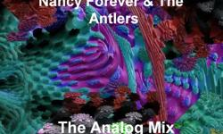 Hand Autographed! 10 SONG MOVIE DVD by NANCY FOREVER AND THE ANTLERS; songs include,THE AUTUMN SONG,HAPPY BIRTHDAY JESUS ,many more plus one never released track...Great for the holidays,,,COLLECTABLE and rare 250.00