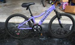 "In great condition, Raleigh 21 speed bicycle. Original cost $205.00. Purple in color and rides smooth. Great for a girl 7 years old & up; has 20"" wheels so you can grow with the bike. Adjustable seat! Won't last for this price!"