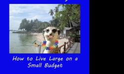 Retire on Social Security provides you with the resources,tips,links and the secrets to living Large on a small budget! Avaliable in paperback for only $13.95 and also available on Kindle for $8.95 Please visit my website at