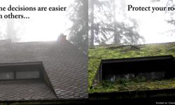 Pdx roofing solutions!! We specialized on roofing,roof cleaning, roof repairs,moss removal.concrete siding deck washing and more