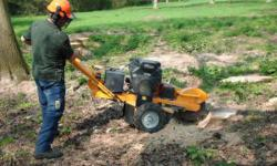 Bought a stump grinder recently and willing to help out folks in the neighborhood to help pay it off. Located in lynden wa but willing to travel in county/local. Nighbor helping neighbor type of deal. I do construction work full time and