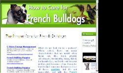 The Proper Care for French Bulldogs What do we look for in a partner? When asked, there are many characteristics that we would often throw out, like, loyal, playful, affectionate, trustworthy, funny, thirsty for knowledge, and looks out for your welfare,