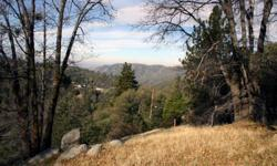 If you can't find the right house, why not build your dream mountain cabin? The list price includes three contiguous lots, totaling 19,000 square feet (according to the county). The upper lot is on Darfo, and offers level entry to the two lower lots.