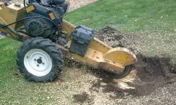 Organic landscape Service 602 579 4982 FREE phone estimate AZ Licensed Bonded Insured, Roc # 176809  Stephen 602 579 4982 Call or