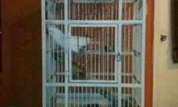 Beautiful white lovablemale umbrella cockatoo. 5 years old. Great with kids and everyone. Very well tamed and trained.Speaks two languages (English and Spanish). Price includes large heavy duty bird cage. Great Christmas gift for anyone