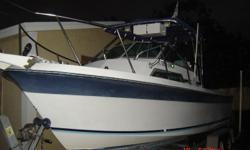 1989 Wellcraft. 225 Mecury Motor.Excellent motor. New gas tank.Cuddy Cabin.Sleeps up to 4. Nice cushions.Lots of storage space.Toliet inside.Fan and lights inside.CB radio,fish finder and dept finder. Good tires. Trailer fairly new. Boat in good