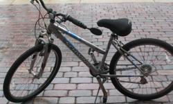 WOMENS SCHWINN 3 SPEED -COLOR GREY WITH BLUE STRIPES. EXCELLENT CONDITION, GARAGE KEPT.