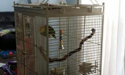 Her name is Sam! Very talkative beautiful bird! Comes with a huge cage that she plays on! The cage was 2000$ by its self! I would love to send pictures or whatever you'd like to see hey! My number is 3093619621 of 3093619620 Laurie or Tom fuller is who